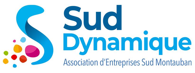 Read more about the article La TV de Sud Dynamique